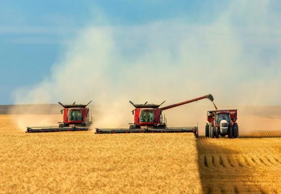 Agronomic Innovation