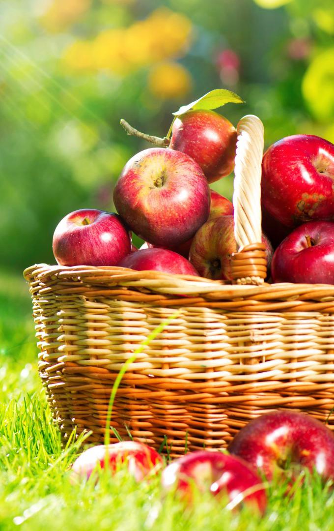 Farm-Grown Fruit